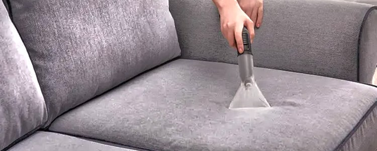 Best Upholstery Cleaning Magill